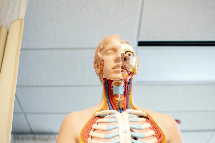 biohack your body